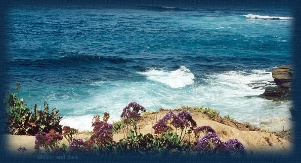 Beautiful Pacific Ocean and shoreline graphic.