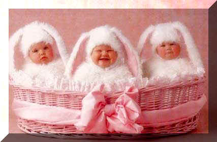 "These three ""bunnies"" may not qualify for Playboy...yet, but they are here to wish you a Happy Easter."