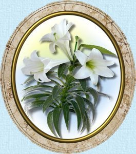 Framed picture of Easter Lilys...the promise of renewal